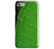 Resting after a Storm iPhone Case/Skin