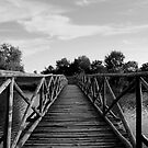 Wood Bridge in Danube Delta  by photographyes