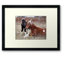 Gentle Winds Framed Print
