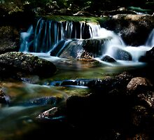 Jordan Stream #1 - Acadia National Park by David Clayton