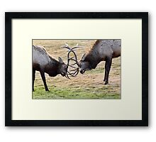 Clash of the Titans Framed Print