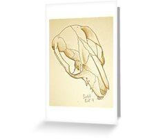 Brushtail Possum Skull Greeting Card