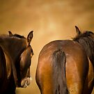 Two Bachelors  by Sue Ratcliffe