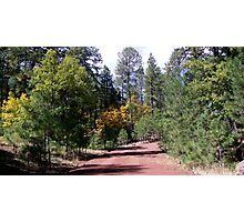 Red Dirt Road Photographic Print