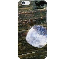 Traces of the Mer iPhone Case/Skin