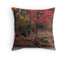 Lone Kayaker Throw Pillow
