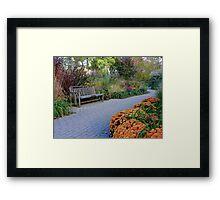 Autumn In Full Bloom Framed Print