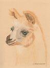 Llama by Jennie L. Richards