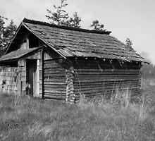 Old Cabin by arawak