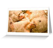 Venetian Brides, Dreaming. Greeting Card