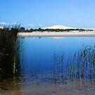 Stockton Bight Wetland by smithrankenART