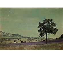 Darby Hills Photographic Print