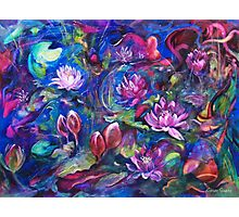 Waterlillies Photographic Print