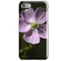 Pink Sundew iPhone Case/Skin