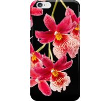 Orchid - 31 iPhone Case/Skin