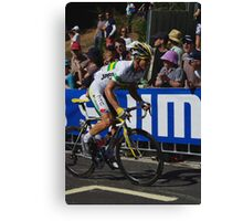 Michael Rogers Canvas Print