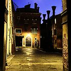 Venice by night by Luisa Fumi