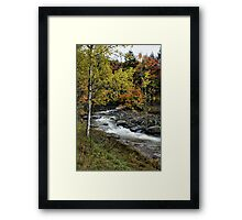 Along The Rural Road Framed Print