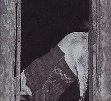Goat In Pullover In Window/Door in Varanasi, India, Ink Drawing by RIYAZ POCKETWALA