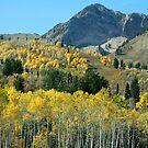 Snow Basin Utah by Raider6569