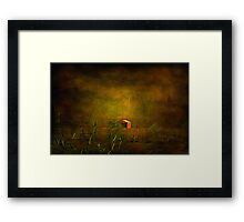 """""""The Little Red Hayshed ..."""" Framed Print"""