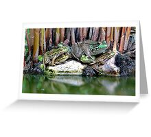 Frog Pile - My Backyard Pond Greeting Card