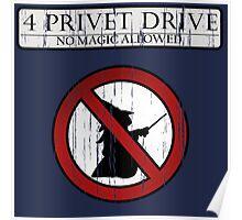 No magic allowed Poster