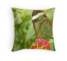 Glasswing butterfly Throw Pillow