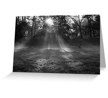 Sunlight though the morning mist Greeting Card