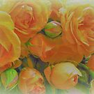 Faded  Roses >> by JuliaWright