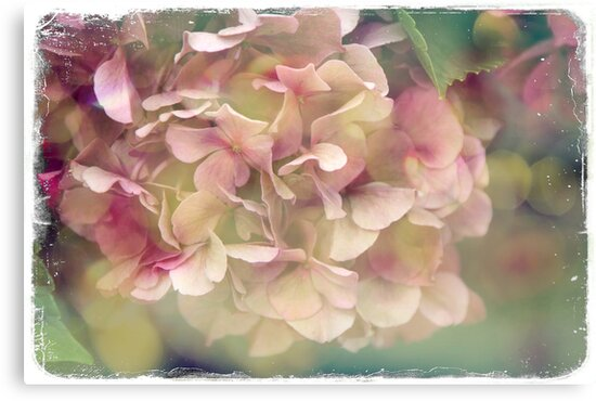 Bright Summer Daze by © Kira Bodensted