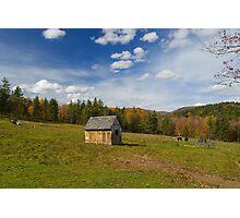 Sonny's Pasture Photographic Print