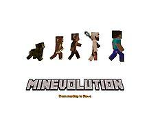 Minecraft - Minevolution Photographic Print