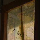 The World Outside My Window © Vicki Ferrari Photography by Vicki Ferrari