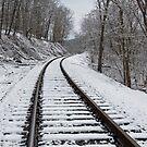 Ride the Rails by Lynn Gedeon