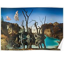 Salvador Dali - Swans Reflecting Elephants Poster
