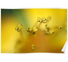 Dancing Yellow Poster