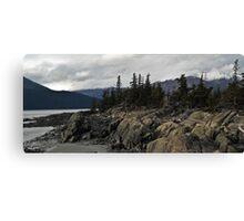 Beluga Point Canvas Print
