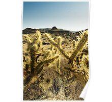Mojave Desert 2 Poster