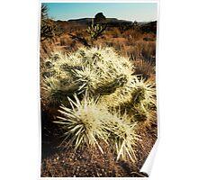 Mojave Desert 3 Poster