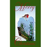 Red Robin Christmas Card Photographic Print