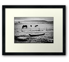 OnePhotoPerDay Series: 293 by L. Framed Print