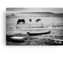 OnePhotoPerDay Series: 293 by L. Canvas Print