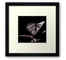 in the darkness there is always light Framed Print
