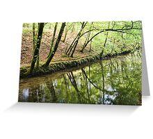 Reflections Plymbridge  Greeting Card