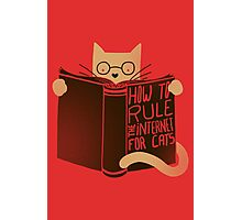 How To Rule The Internet For Cats Photographic Print