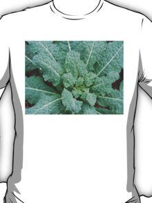 Lacinata Kale T-Shirt