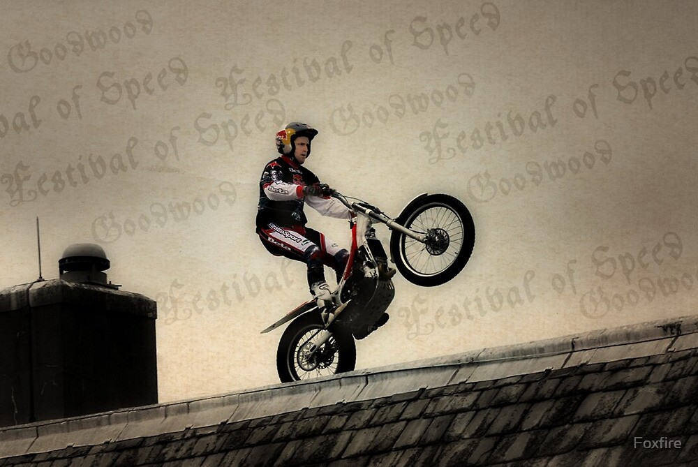 DareDevil at Festival of Speed 2010 by ©FoxfireGallery / FloorOne Photography