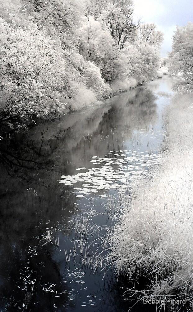 Carp River - Ontario by Debbie Pinard