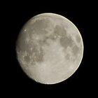 Moon by linzi200